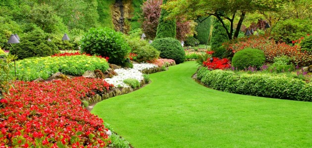 Oakville grass cutting services for Lawn and garden services