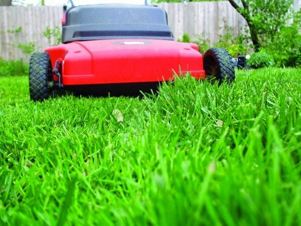 Greenways landscaping oakville grass cutting for How often should you mow your lawn